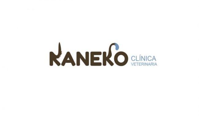 KANECO_1