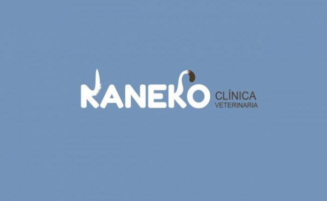 KANECO_2